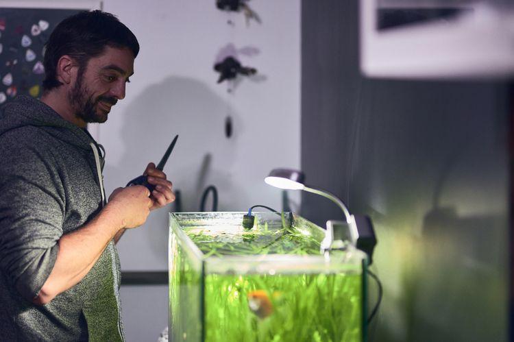 Při zakládání akvária byste neměli zapomínat na správné osvětlení