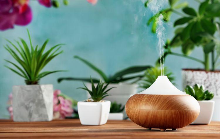 Jak vybrat aroma difuzér?