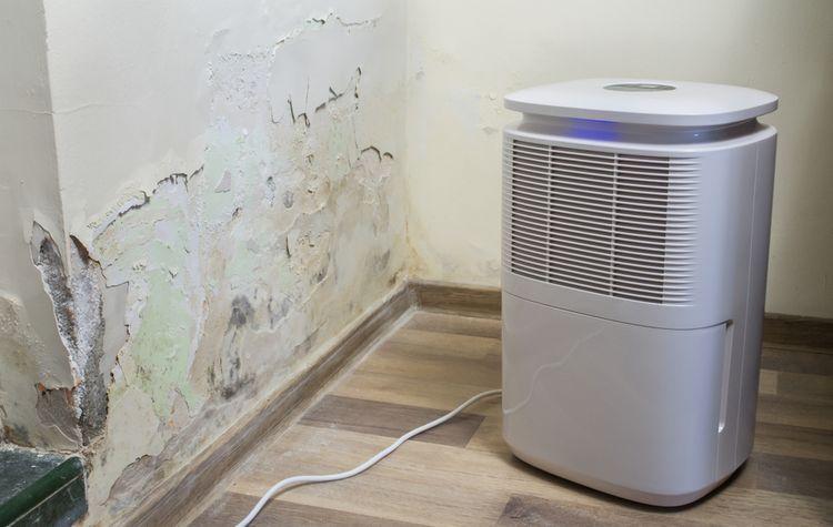 Odvlhčovavací výkon odvlhčovače vzduchu