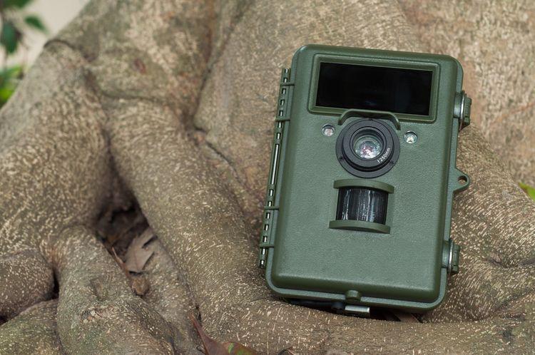 Zelená fotopast do exteriéru