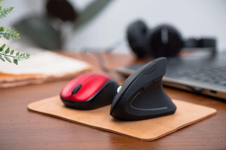 Ergonomická/vertikální myš vs. klasická počítačová myš
