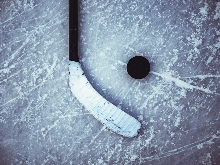Hokejka s pukem na ledě