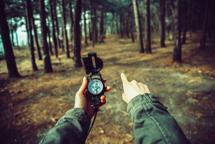 Orientace podle kompasu