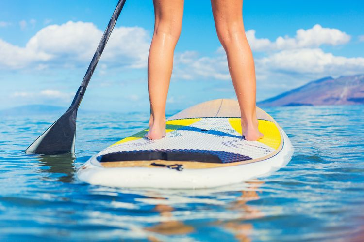 Allround paddleboard