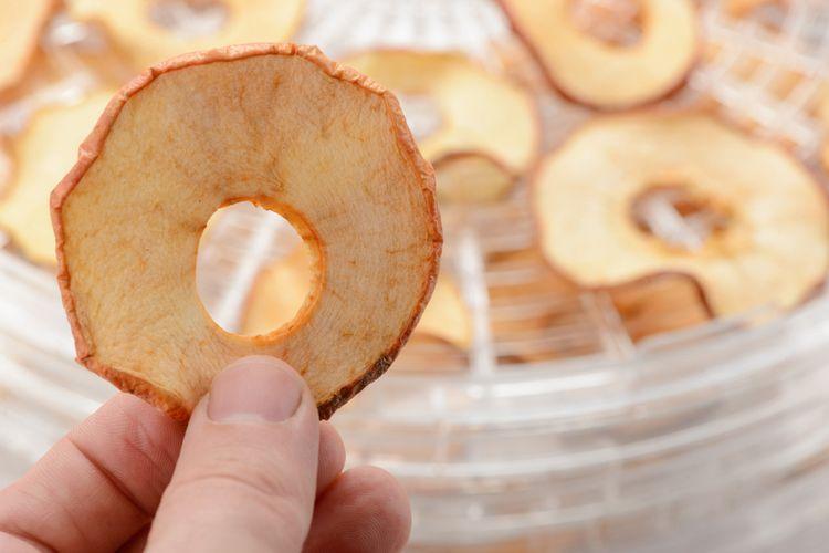 Sušení jablek v bílé okrouhlé sušičce ovoce