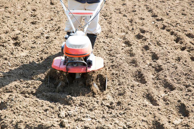 Kultivace půdy pomocí benzinového kultivátoru