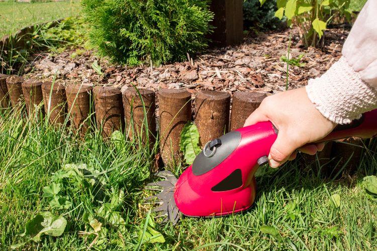 Akumulátorové nůžky na trávu– baterie