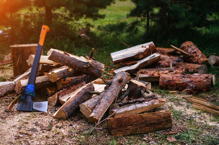 Sekera s plastovým topůrkem na kácení dřeva