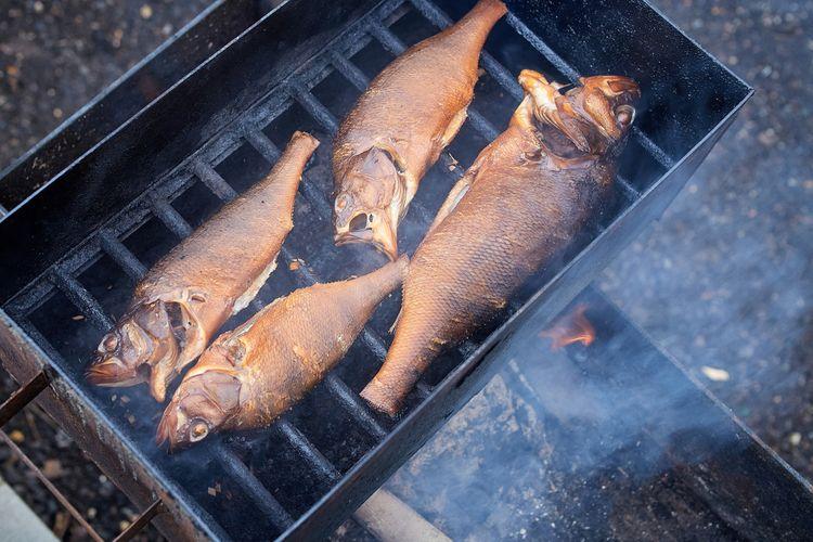 Hranatá udírna na ryby