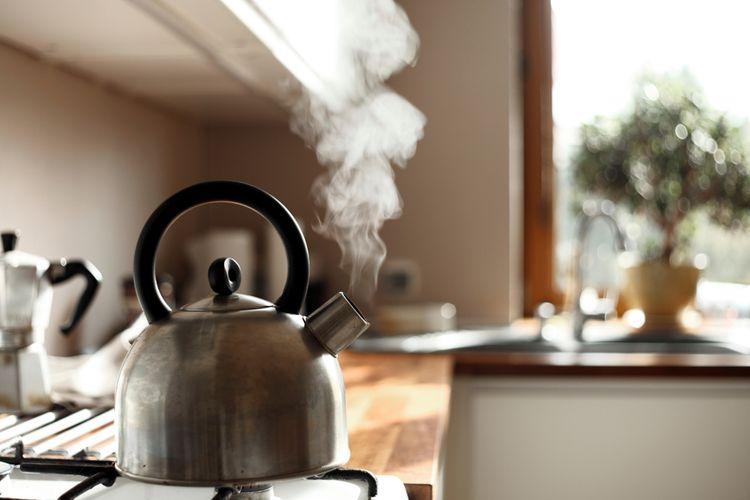 Jak vybrat čajník?