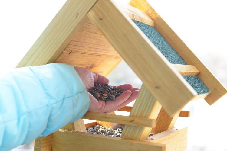 Péče o krmítko pro ptáky