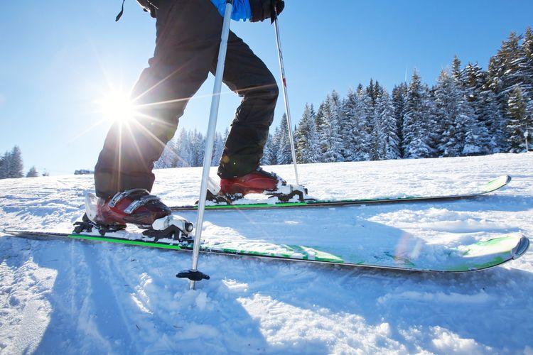 Lyže a lyžařky