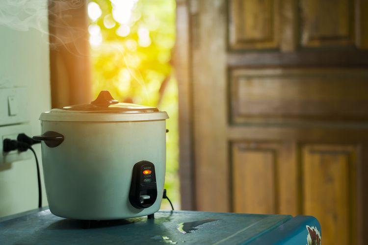 Domácí rýžovar