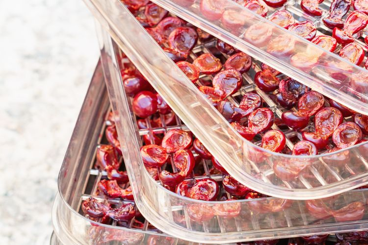 Sušička ovoce s miskami