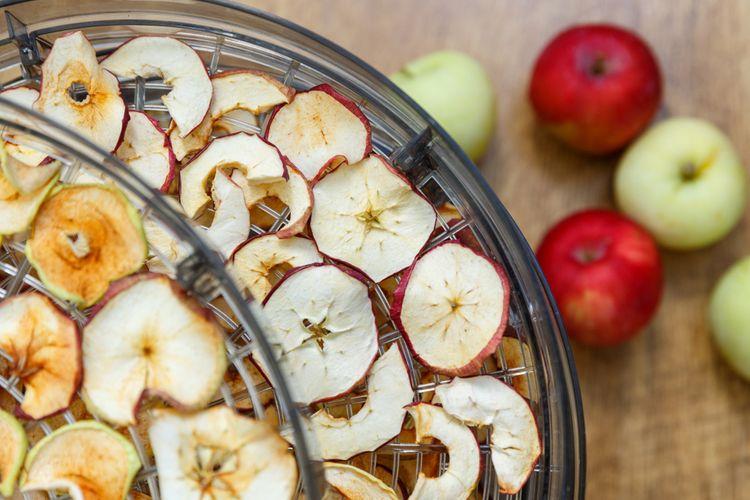 Velká sušička ovoce