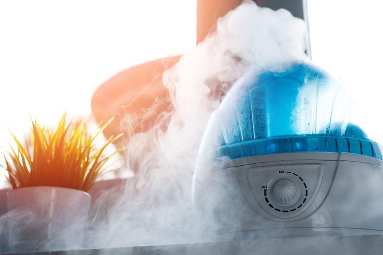 Jaký je nejlepší zvlhčovač vzduchu pro děti a alergiky? S ionizátorem
