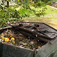 Nejlepší kompostéry do zahrady i domácnosti (bytu, na balkon, do kuchyně)