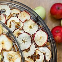 Nejlepší sušičky potravin (ovoce). Recenze a test pořadí