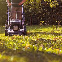 Elektrické a benzínové zahradní sekačky - Jak vybrat sekačku