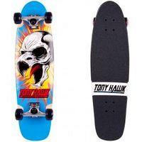 Tony Hawk Roarry
